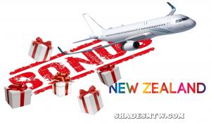 Pokies for NZ